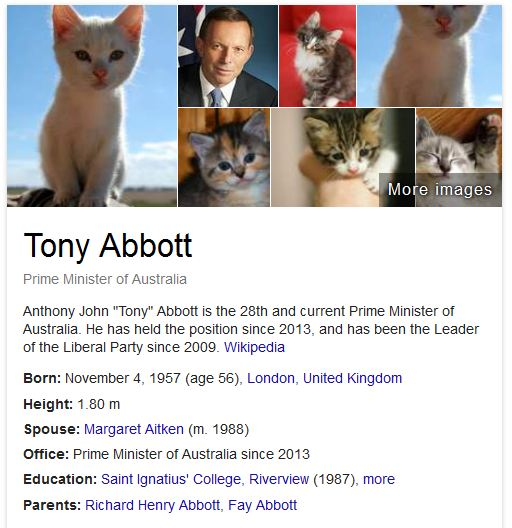 If Tony Abbott's face causes you too much anguish, there's a plugin for mozilla that turns (almost) all the photos of him into cute, furry kittens.